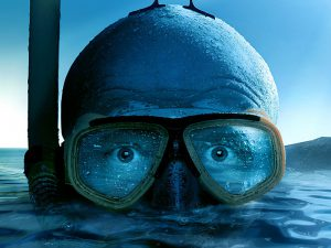 0fe7714a522 Kan man få svømmebriller med styrke? - Vadehavskunst